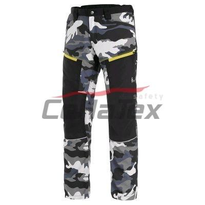 CXS DIXION